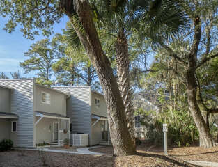 Beautiful live oaks and Palmetto trees provide shade to this nice complex.