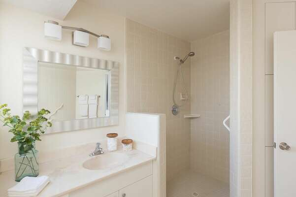 Master En-Suite Bathroom w/ Tub + Shower- First Floor