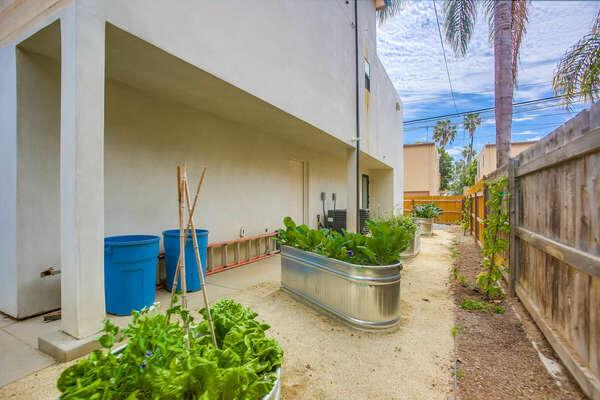 Back Yard w/ Seasonal Vegetable Garden