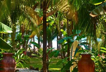 One of the best locations in Santa Teresa! The white sand beach is a few steps from the backyard