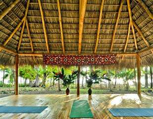 Plenty space for a private yoga class for your group