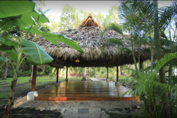 The shala in the tropics