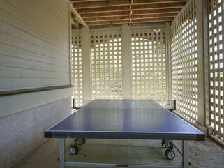 Ping pong table for fun family tournaments
