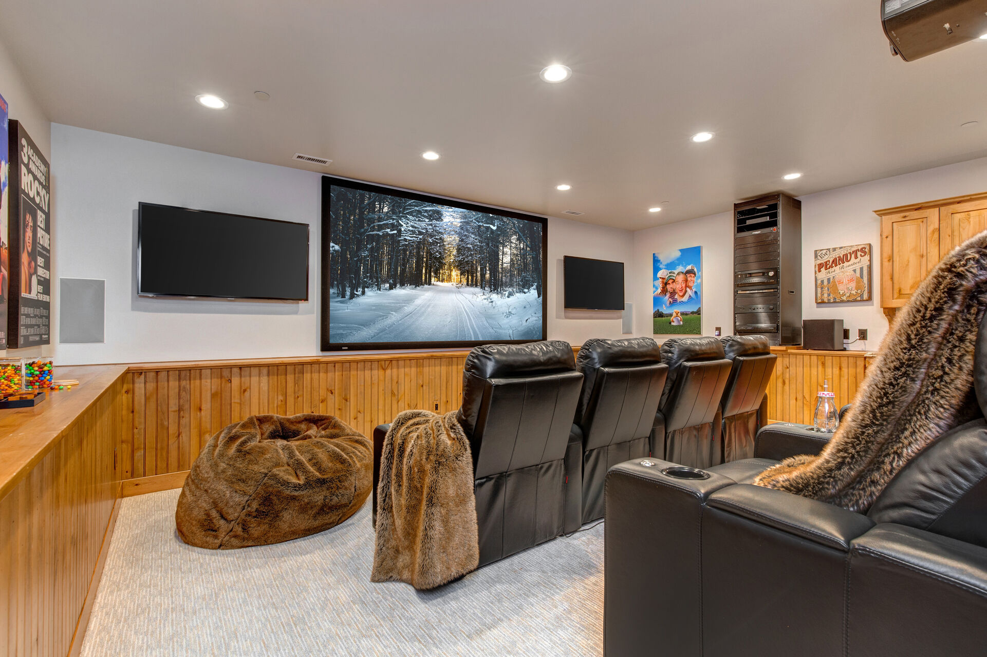 Theater Room with a Big Screen, Two 50