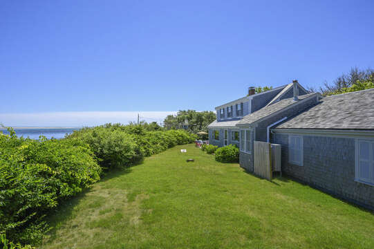 More views of lush back yard -  - 229 Scatteree Road Chatham Cape Cod - New England Vacation Rentals Vacation Rental