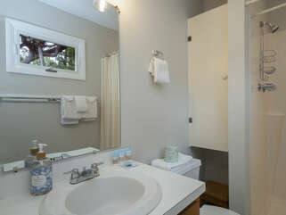 The master bath has a shower, vanity area.