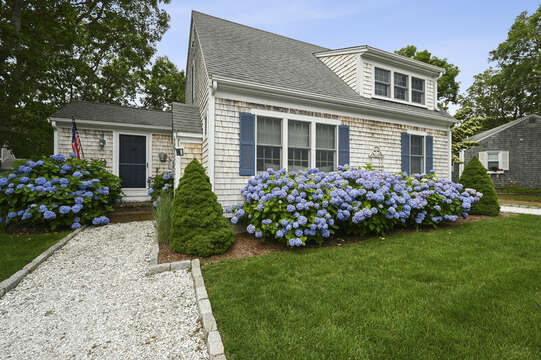 The Blue Hyydrangea -  26 Sea Mist Lane South Chatham Cape Cod - New England Vacation Rentals