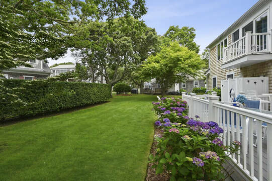 Lush lawn for yard games -  26 Sea Mist Lane South Chatham Cape Cod - New England Vacation Rentals