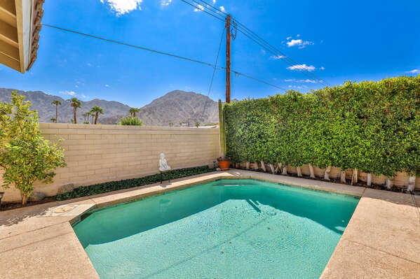 Palm Springs group vacation homes